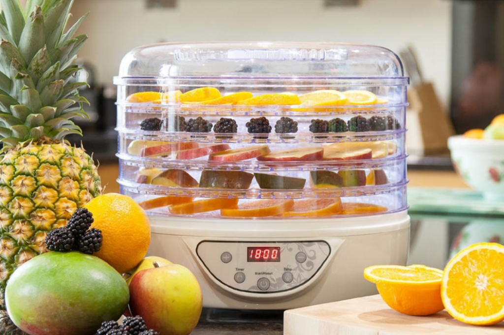 food-dehydrator-buying-guide