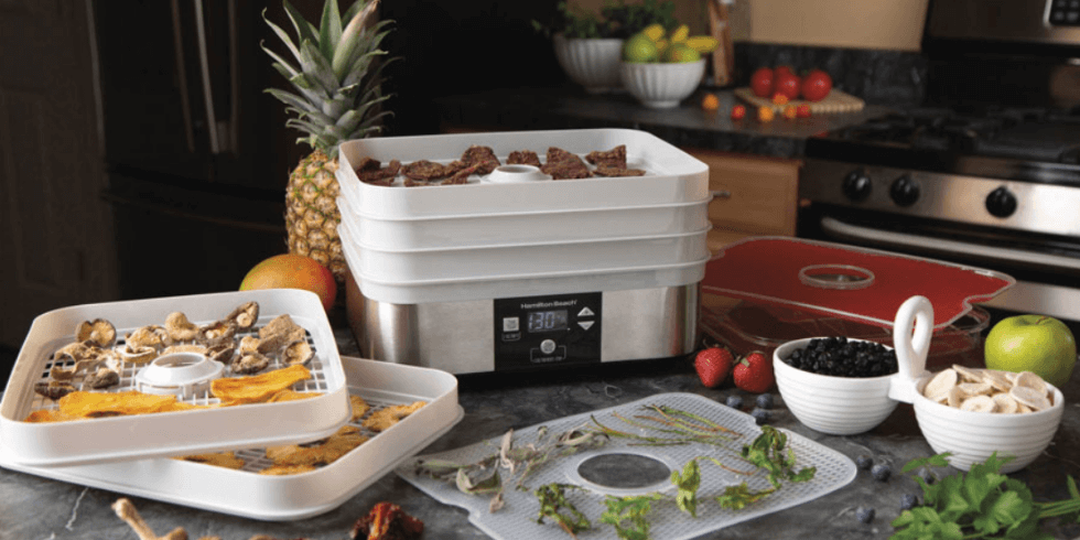 Best Food dehydrators in 2020